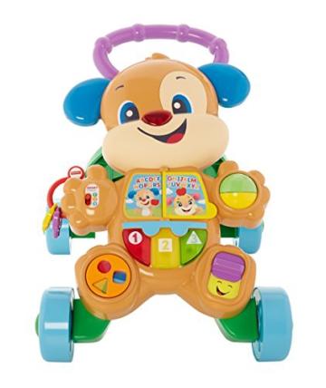 Fisher-Price FRC83 - Lernspaß Hündchens Lauflernwagen und Baby Lauflernhilfe mit mitwachsenden Spielstufen, Liedern und Sätze, Gehhilfe ab 6 Monaten, deutschsprachig - 1